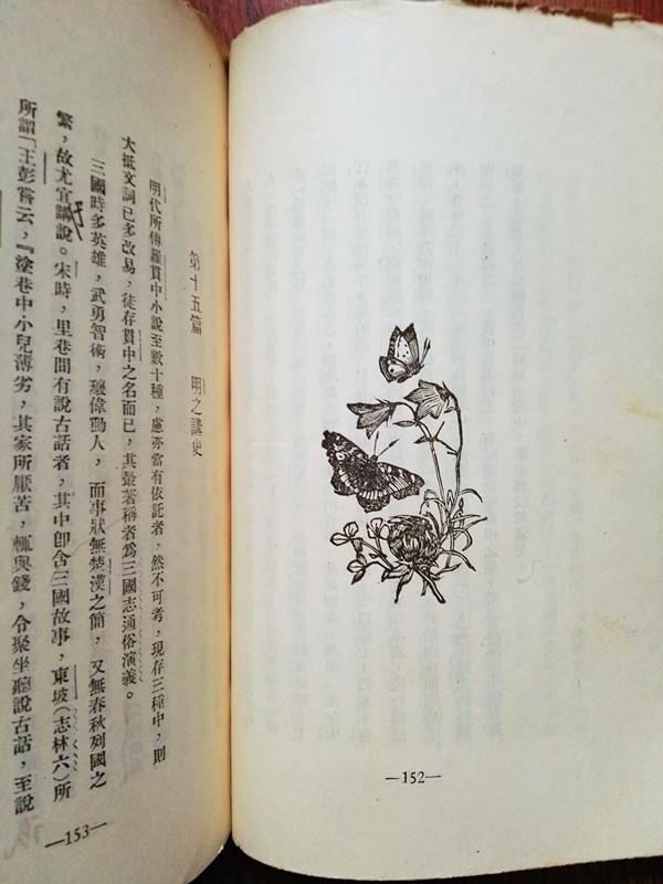 尾花(645).jpg