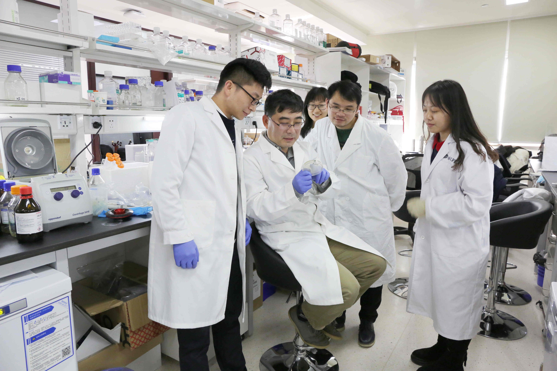 (上交医) 上海交通大学医学院上海精准医学研究院雷鸣团队围绕核酶结构开展了一系列研究.jpg