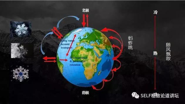 有机污染物全球迁移循环路径图