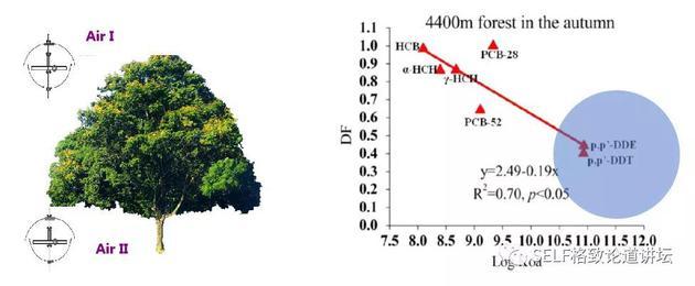 50%大气DDT被林冠吸收