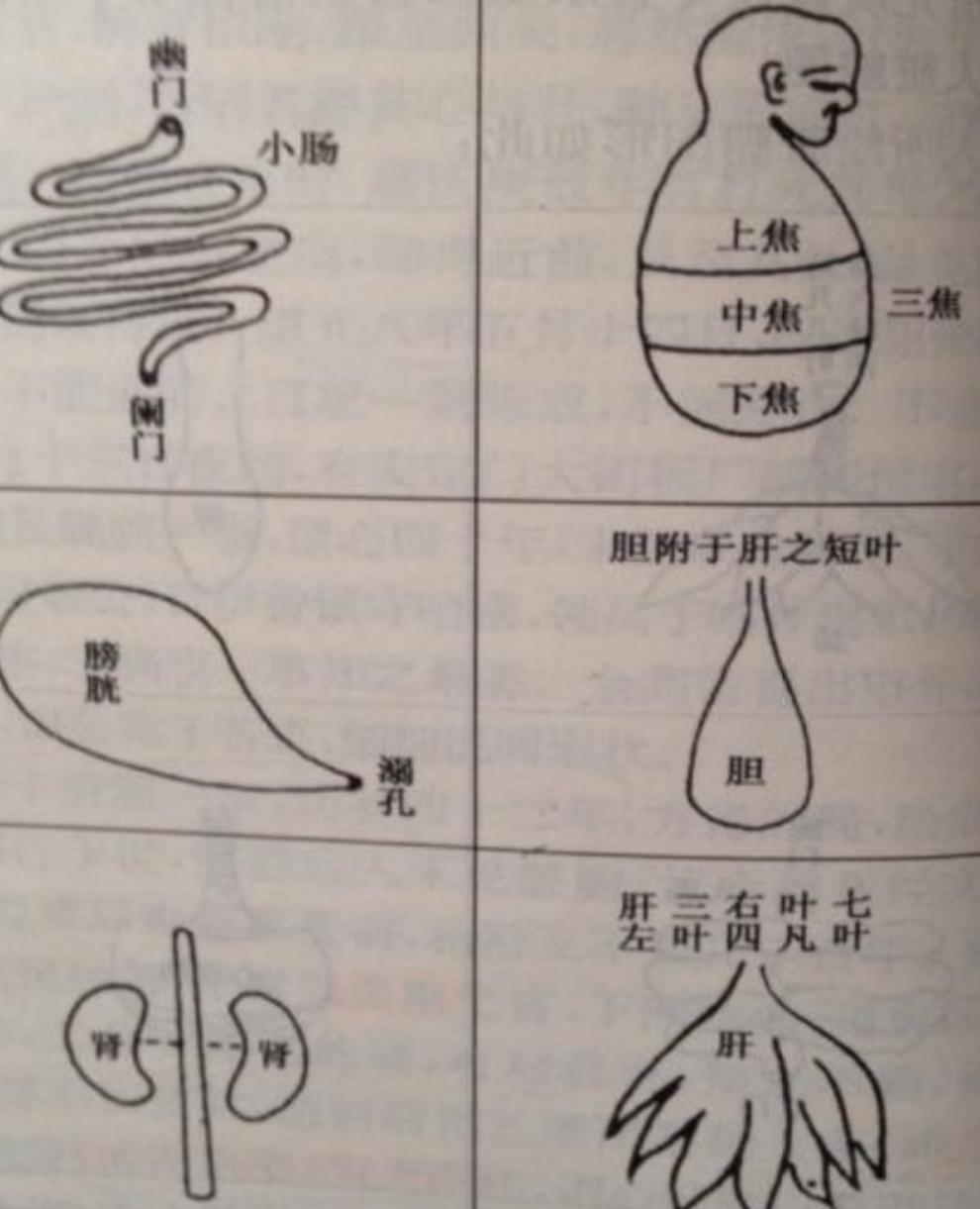 王清任图.jpg