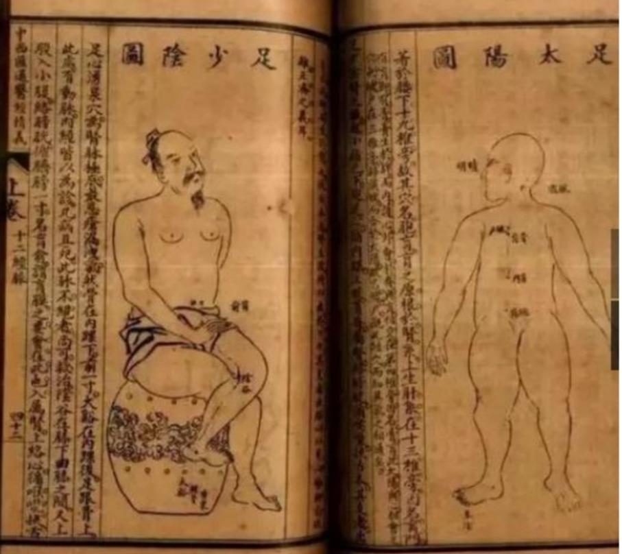 唐宗海解剖图.jpg