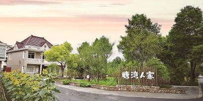 宝山区罗泾镇塘湾村的乡村生活新画卷里