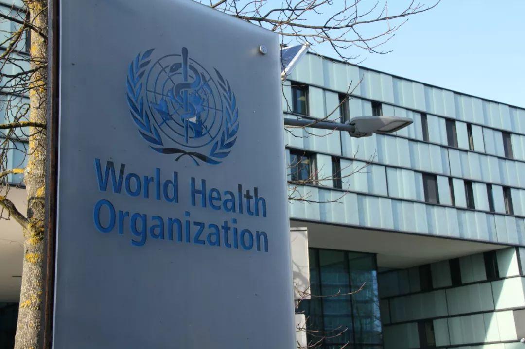 世界卫生组织.jpg