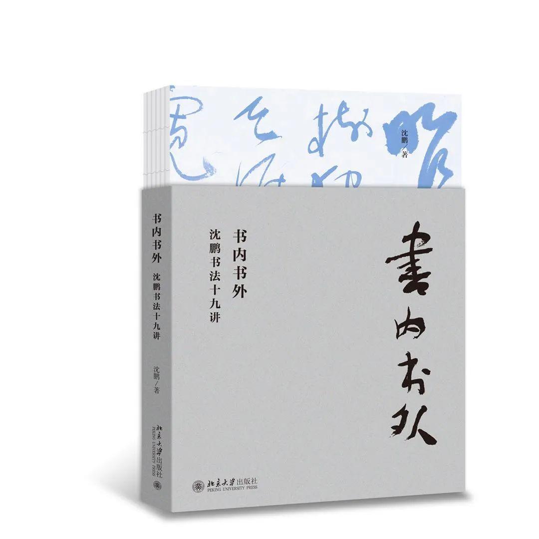 书内书外:沈鹏书法十九讲.jpg