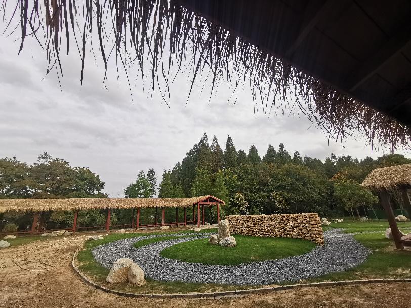 菊园现场照片1.png