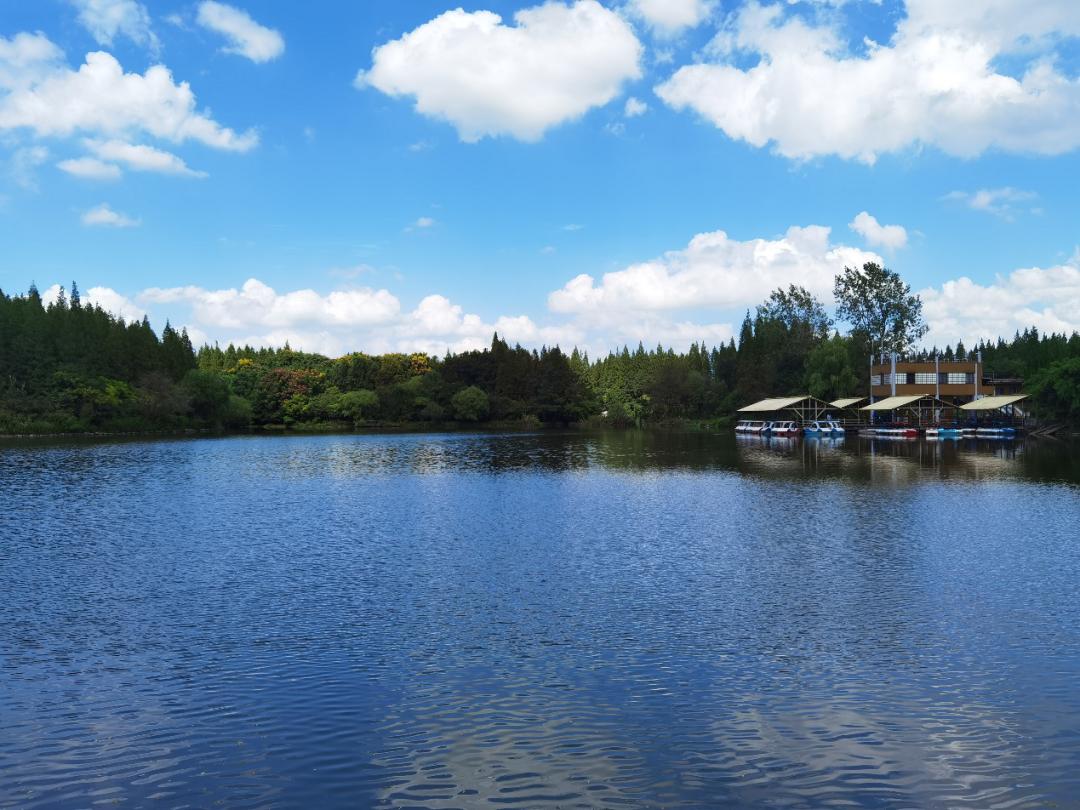 水生态工程现场照片1.png