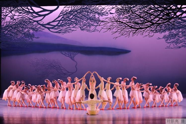 从舞剧《永不消逝的电波》到《朱�q》振翅,上海歌舞团为何能二度电脑御诚网