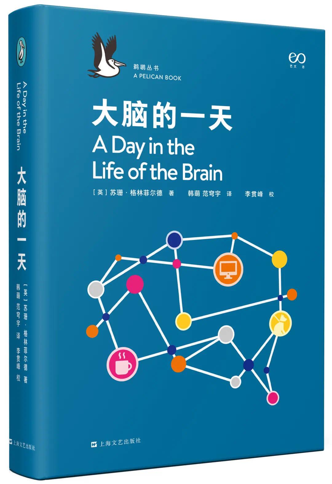 大脑的一天.jpg