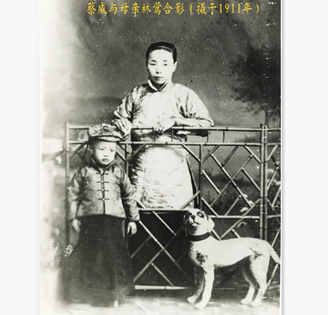 四岁的蔡威与母亲林莺645.jpg