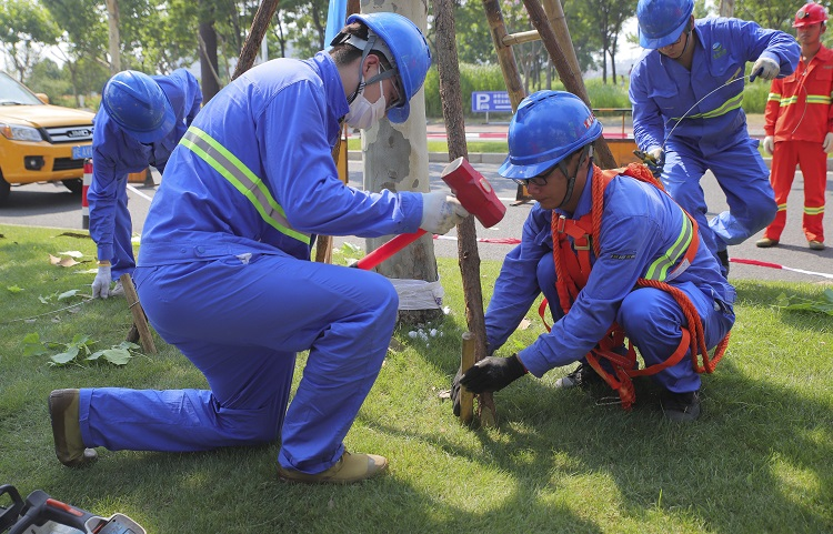 2021年上海市绿化系统防汛防台应急抢险演练72.jpg